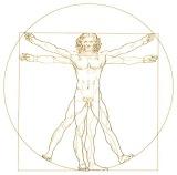 Vitruvian man - Rev2